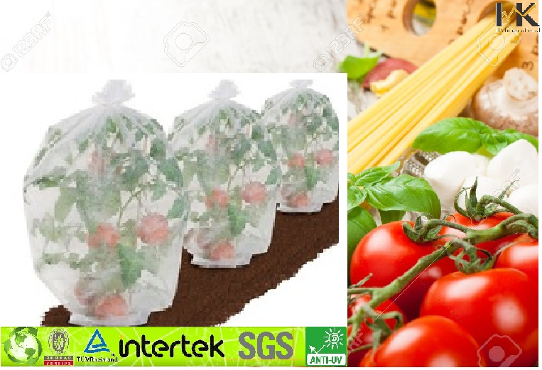 Nonwoven UV Treated Tomato Cover